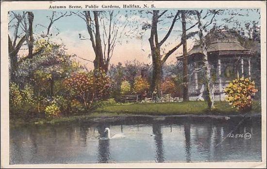 swan autumn scene public gardens halifax nova scotia. Black Bedroom Furniture Sets. Home Design Ideas