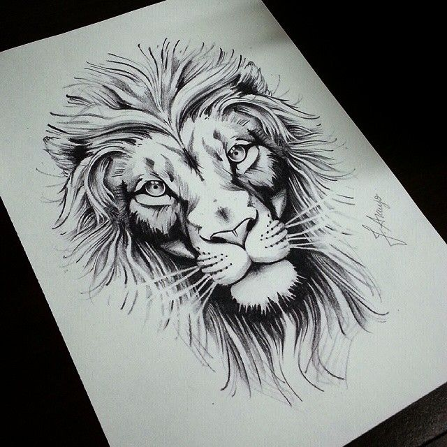 Pictures Of Lion Tattoo Drawings Rock Cafe