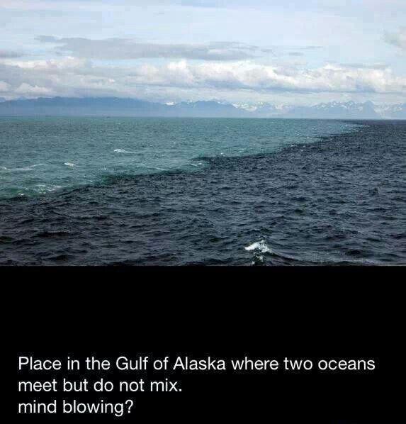 2 oceans