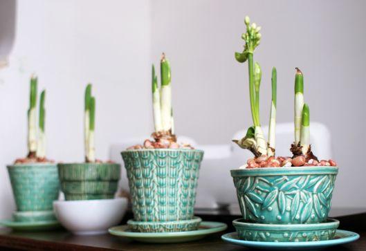 Flea Market Finds Vintage Flower Pots Vintage Flower Pots Flower Pots Vintage Pottery