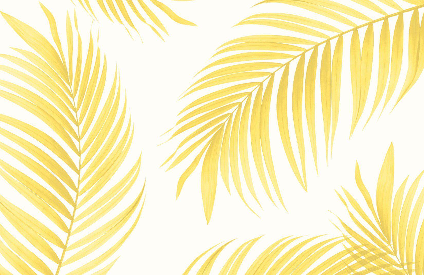 Yellow Tropical Palm Wallpaper Mural | MuralsWallpaper
