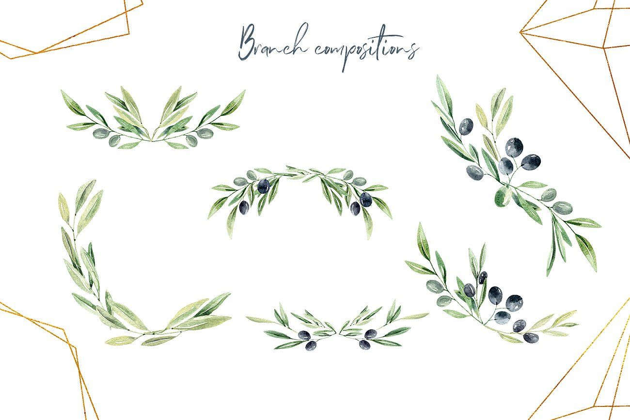 Watercolor Olive Branches Olivo Arbol Olivo Flores