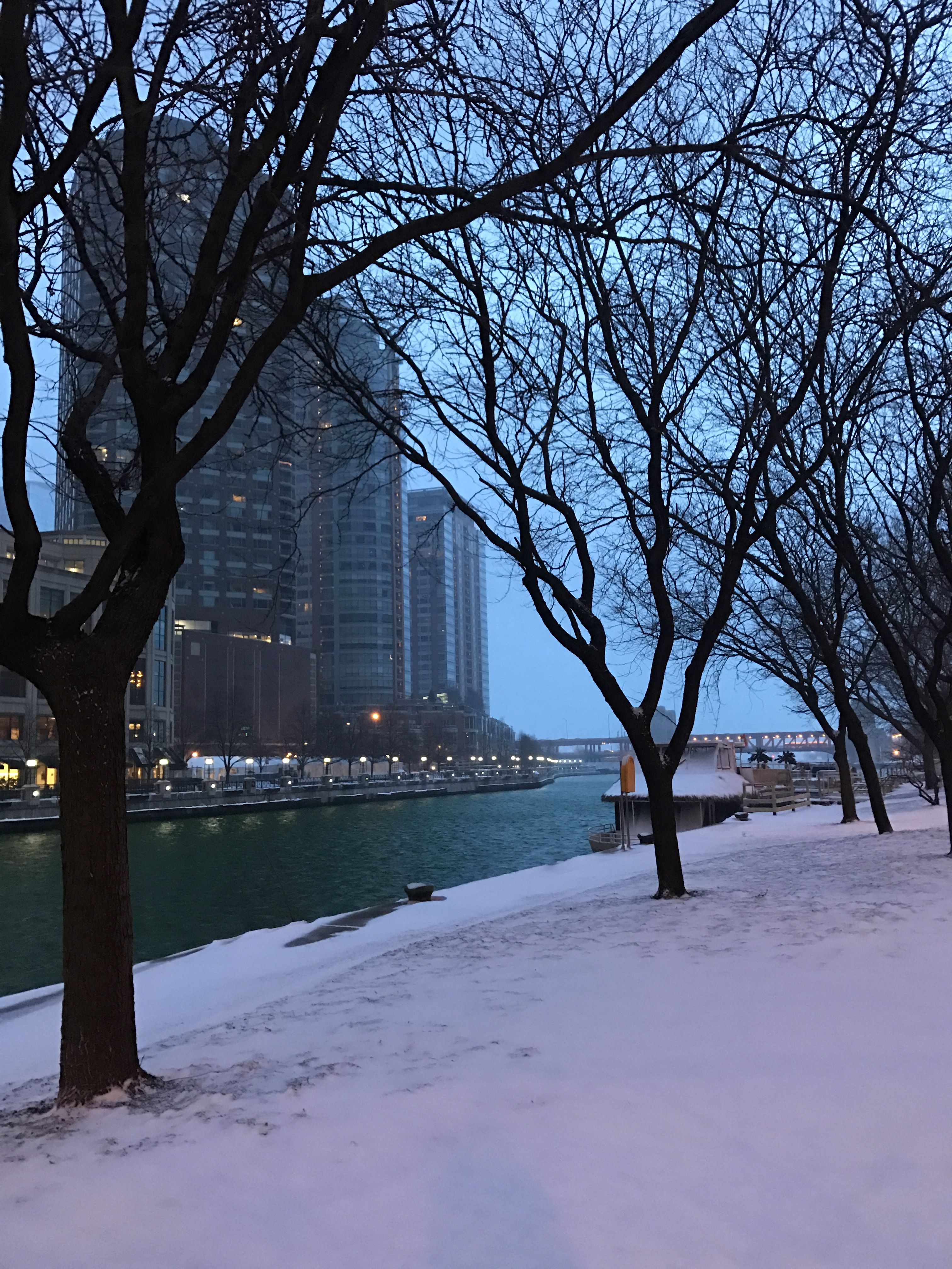 Chicago Snowy Morning 20170313 Chicago Pictures Chicago Chicago Riverwalk