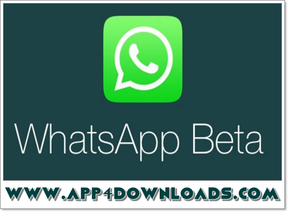 WhatsApp 2 17 343 Beta APK Download For Android | Best Free