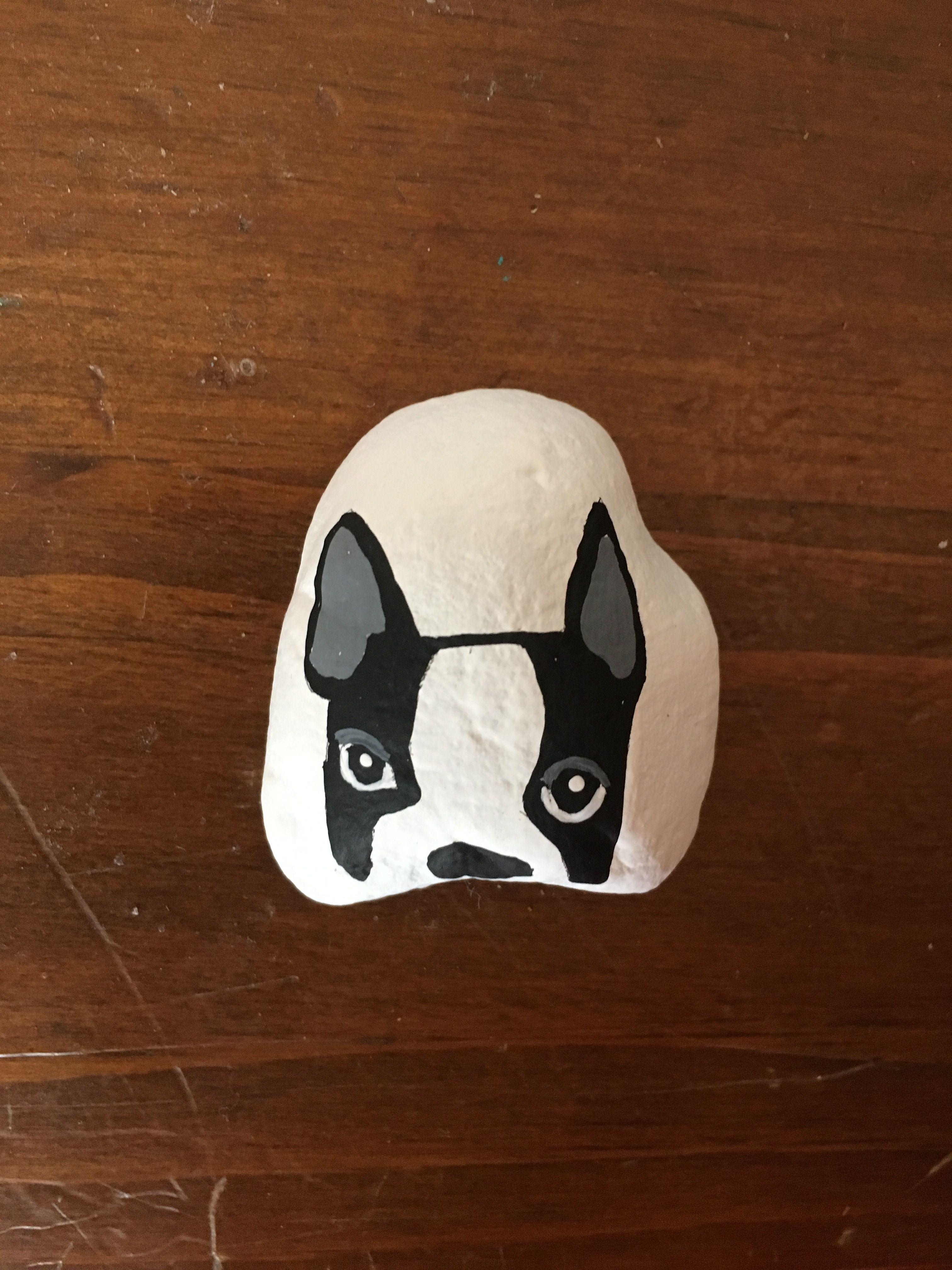 Boston Terrier Painted Rock Dogs Boston Terrier Art Boston Terrier Painting Rock Painting Designs