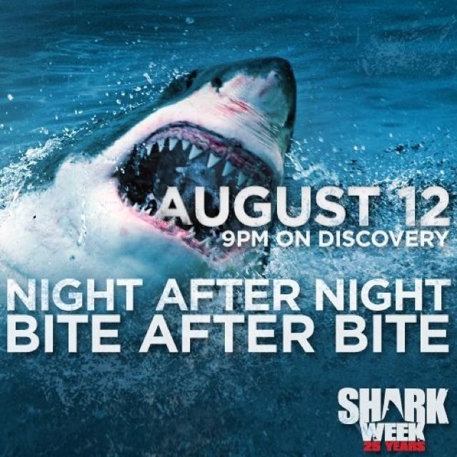 The Countdown to shark Week has begun! Going Discovery and ...