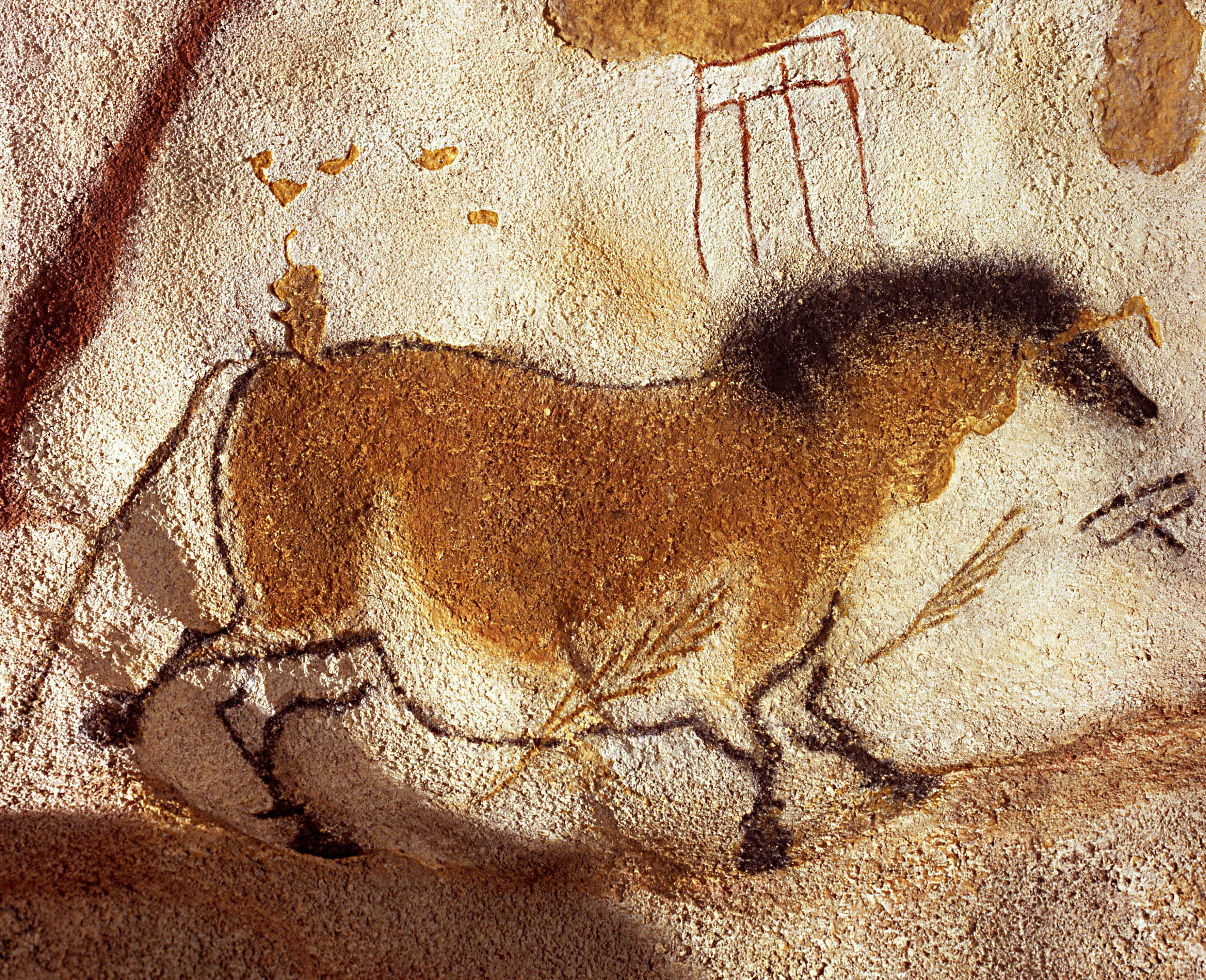 Lion Man Cave Art : Prehistoric cave paintings of horses were spot on say scientists