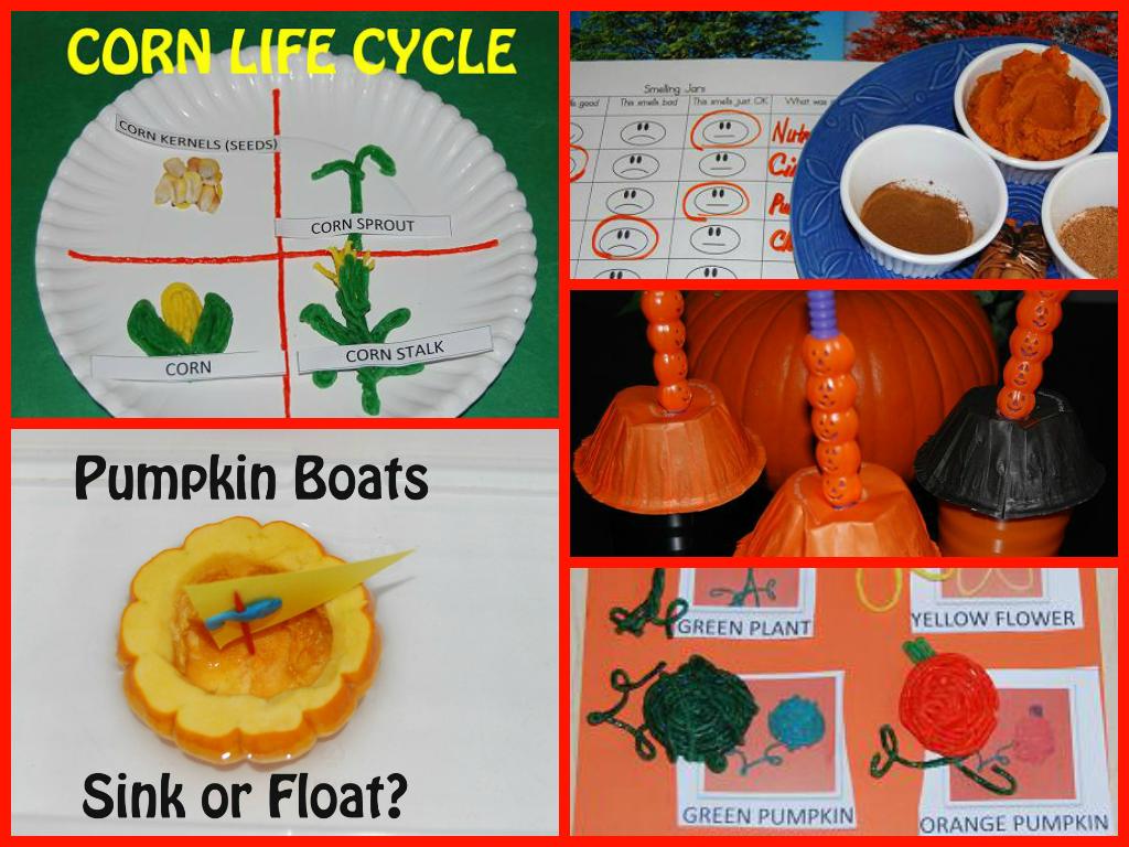 Autumn Colours Plant Science For Preschoolers