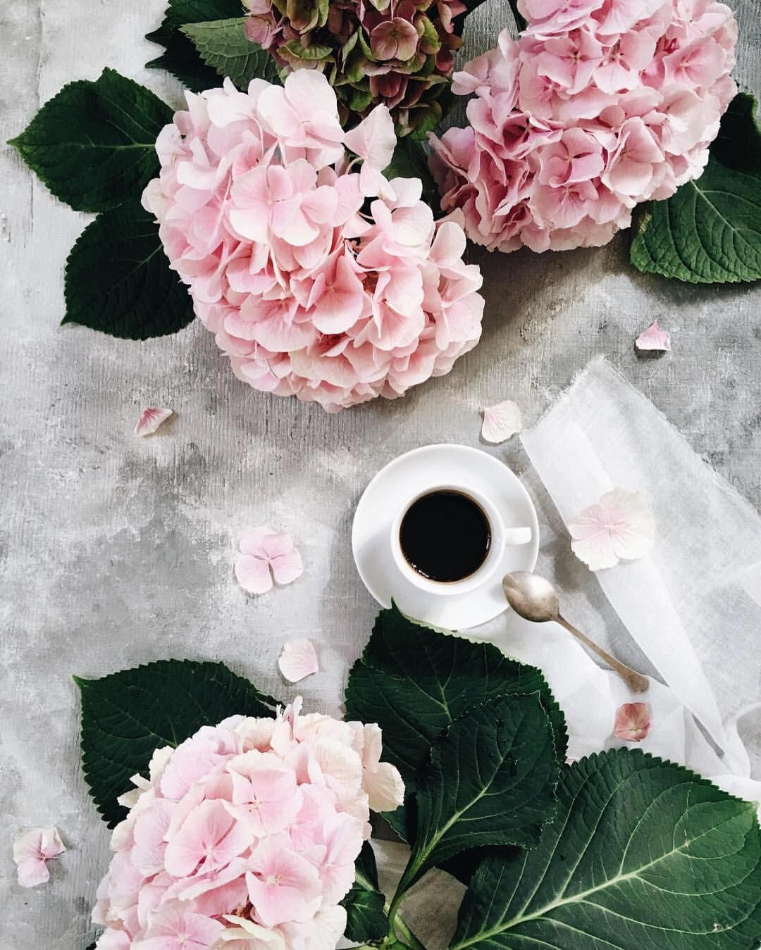 Wishing you all a wonderful start to the new week with hot cup of coffee and hydrangea from the market Всем хорошей недели,крепкого кофе и… #cupofcoffee