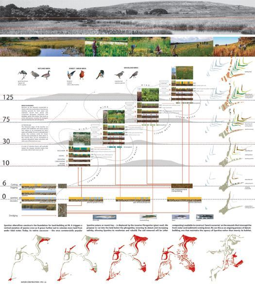 Park Design Tìm Với Google: Fresh Kills Competition Boards - Google Search