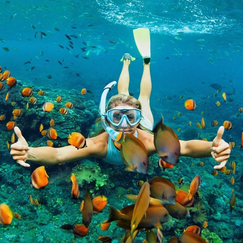 Blue Lagoon Diving