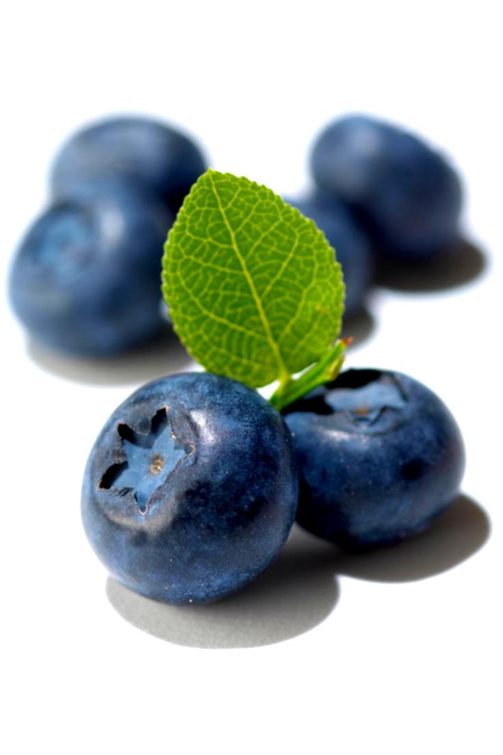 Обои черника, wood, berries, голубика, Blueberry. Еда