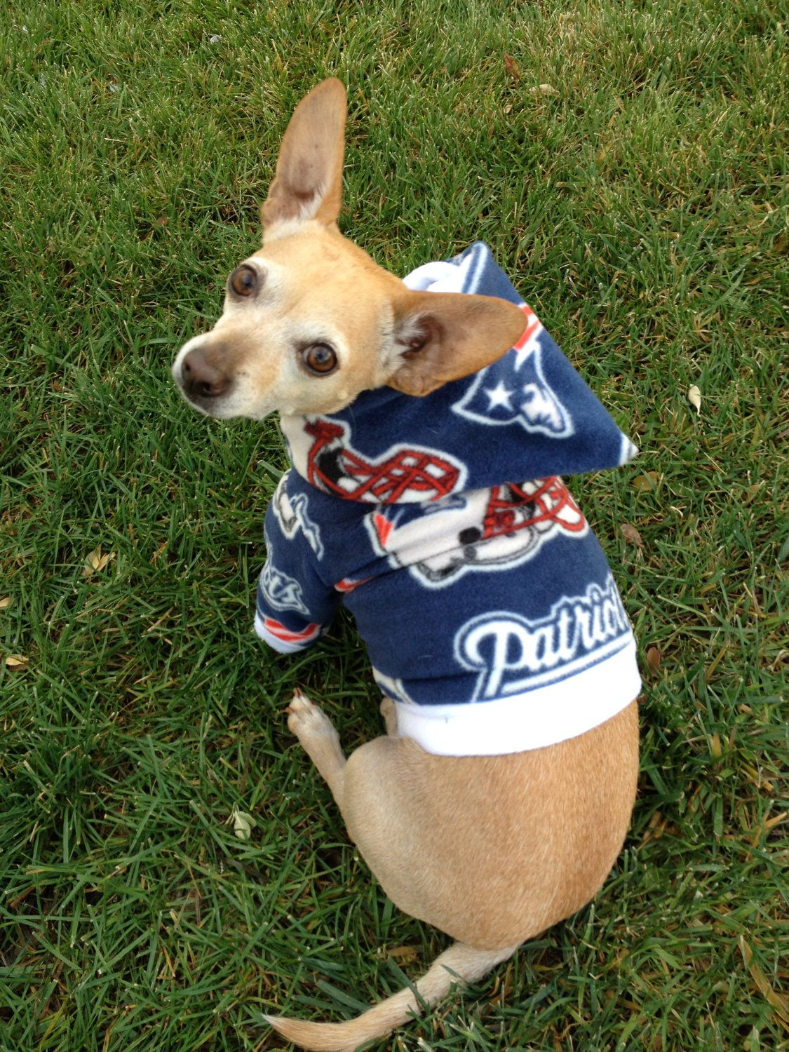 outlet store c145f ef38f NFL New England Patriots Custom Dog Hoodie #Patriots ...