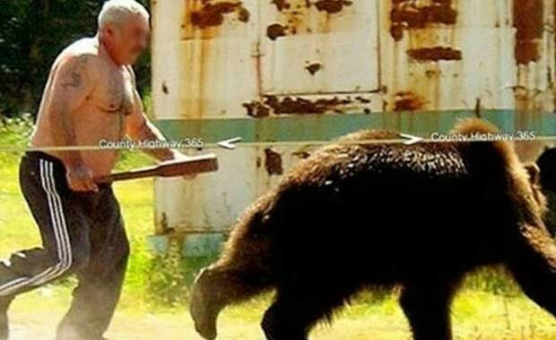 t's bare man versus bad bear. The Google Street View camera just accidentally discovered that the best way to scold your neighbor's pet bear is to chase him off your property with a club while going shirtless.