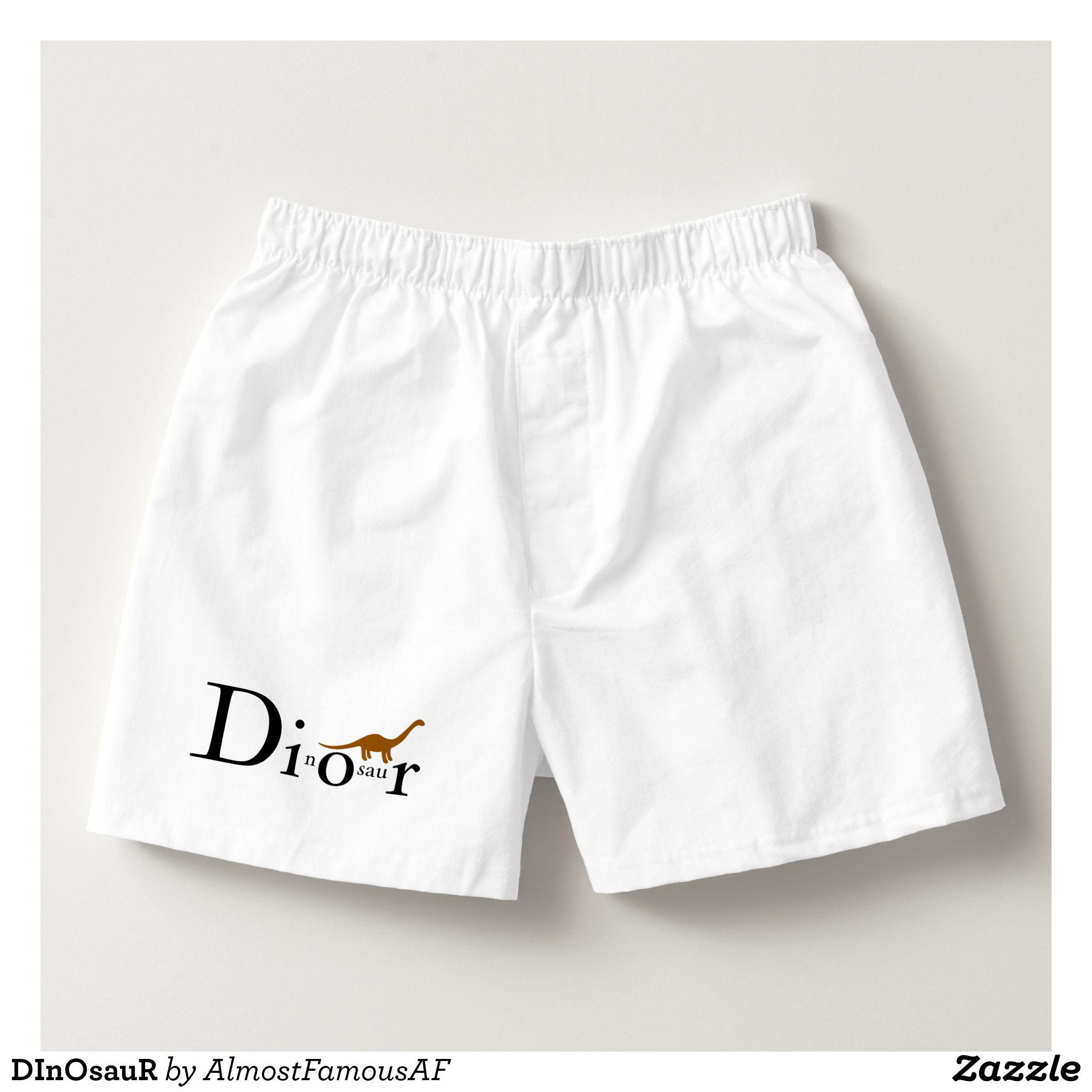 Mens Soft Breathable Dinosaur Wall Decor White Underwear Boxer Briefs