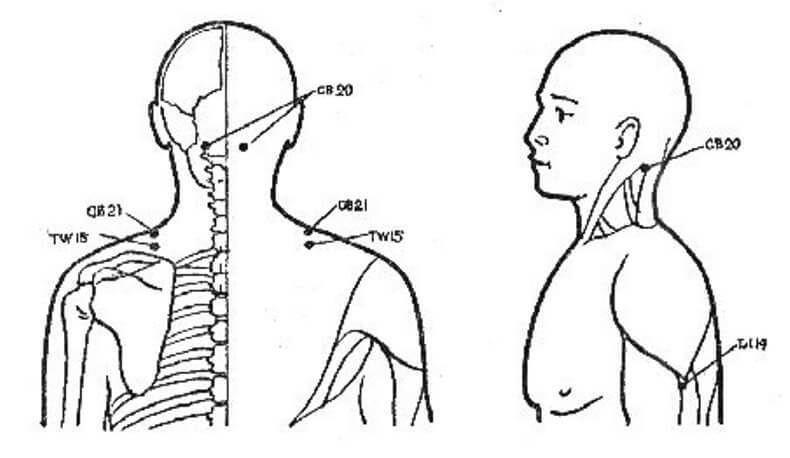 Точки для лечения плечевого сустава д лечение кисты на коленном суставе