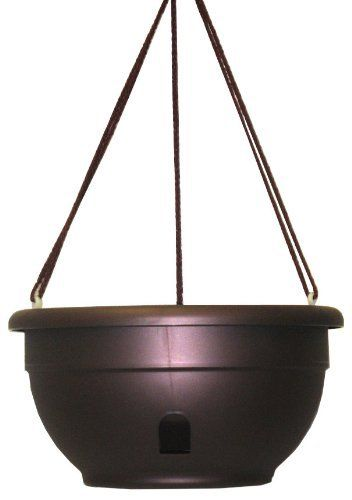 "12"" Self-Watering Hanging Planter [Set of 6] Color: Cabernet by Apollo Plastics. Save 26 Off!. $40.92. Holds 7 quarts dry. Polycotton wick will not rot. Self watering. Unique wick system draws the moisture from the reservoir up into the soil allowing plant to feed at. Hanging planter. H012-CABERNET Color: Cabernet Features: -Hanging planter.-Material: Polypropylene.-Unique wick system draws the moisture from the reservoir up into the soil, allowing the plant to feed at its own rate.-Polyc..."