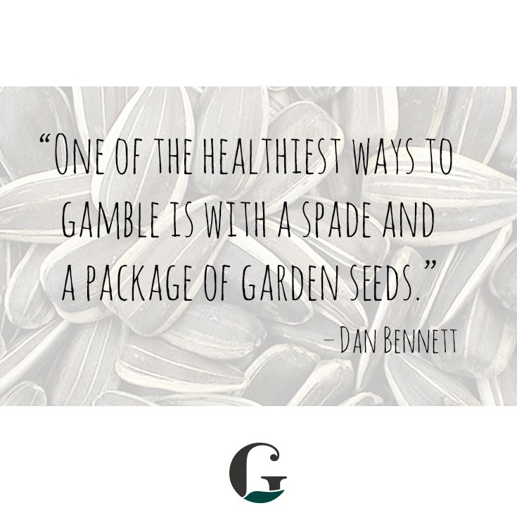 Gardening Thought For The Day: U0027One Of The Healthiest Ways To Gamble Is  With A Spade And A Package Of Garden Seedsu0027