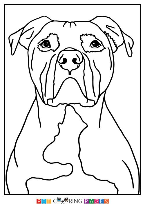 American Pit Bull Terrier Coloring Page | COLOR MY WORLD COLORFUL ...