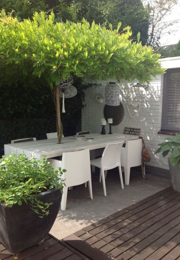 White Garden Table, With A Beautiful Tree In The Middle For The Shade.