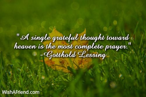 Thanksgiving Inspirational Quotes Mesmerizing Image Result For Thanksgiving Quotes Inspirational  Wisdom .