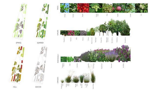 Strategies Junecallwood8 Landscape Diagram Landscape Architecture Graphics Landscape Architecture Drawing