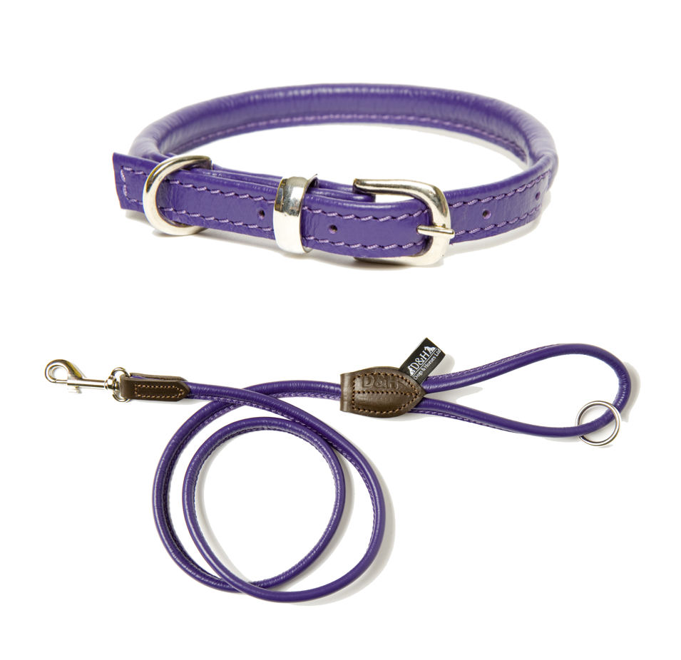 Dogs and Horses Designer Rolled Leather Dog Collar and Lead Set Pink