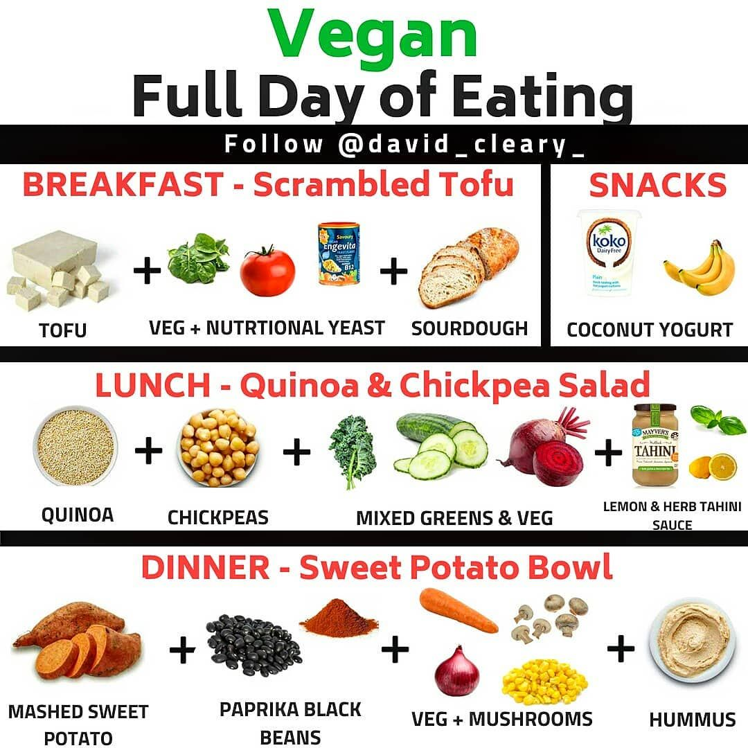 50++ What do vegans eat in a day ideas