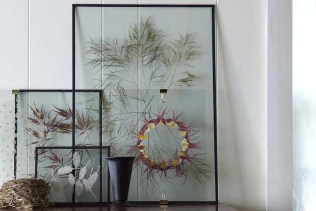 1000 images about botanical art on pinterest california homes wands and acrylics