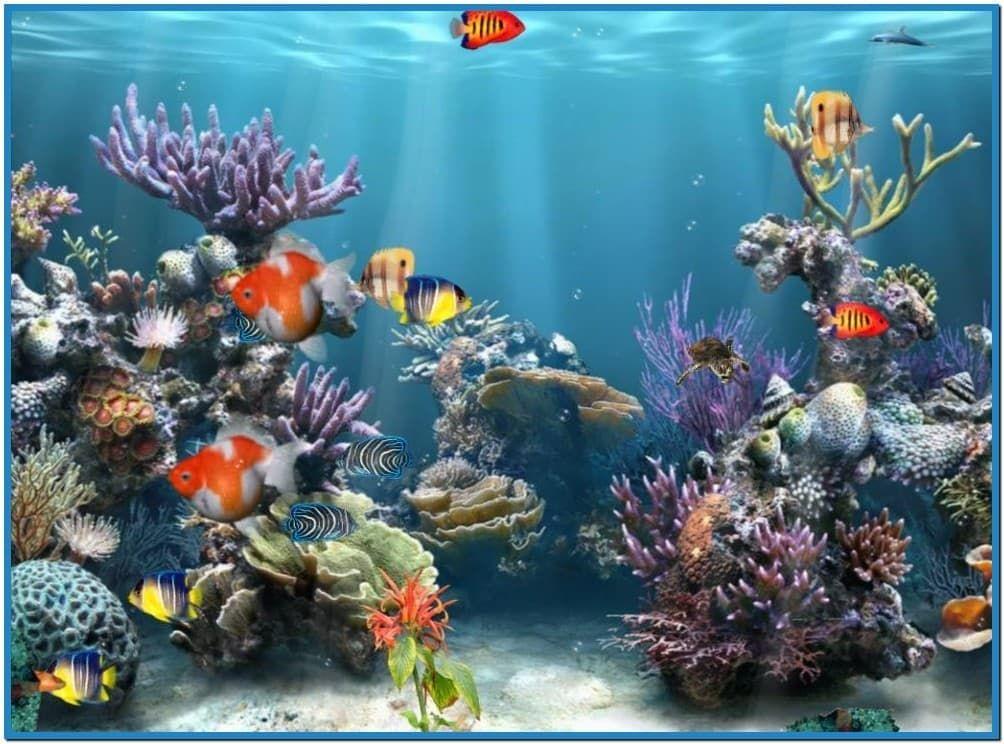 Dream Gardens Screensaver V1 Full C Reef Adventure Aquarium