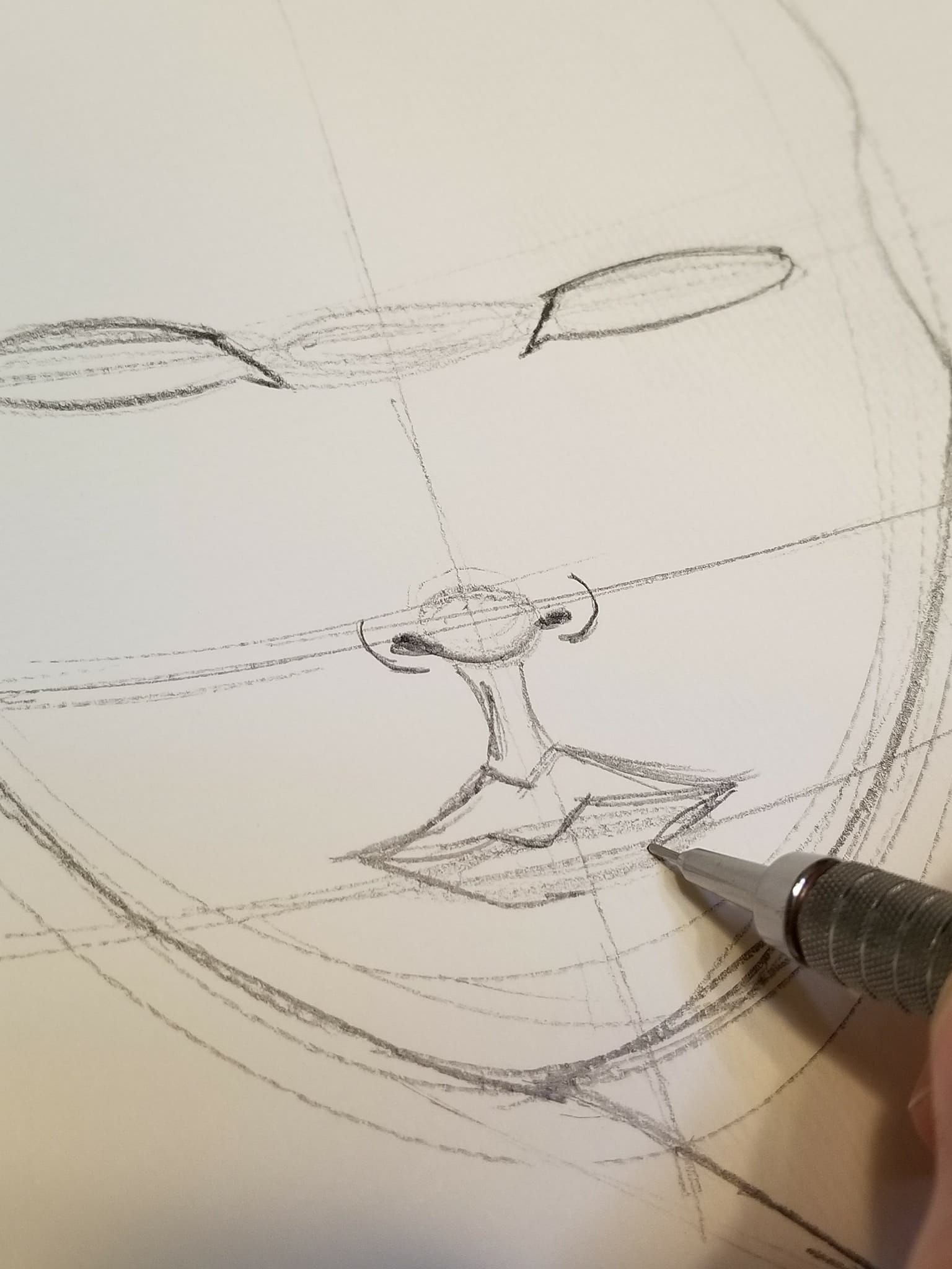 Basic Face Drawing | Pencil drawing tutorials, Art ...