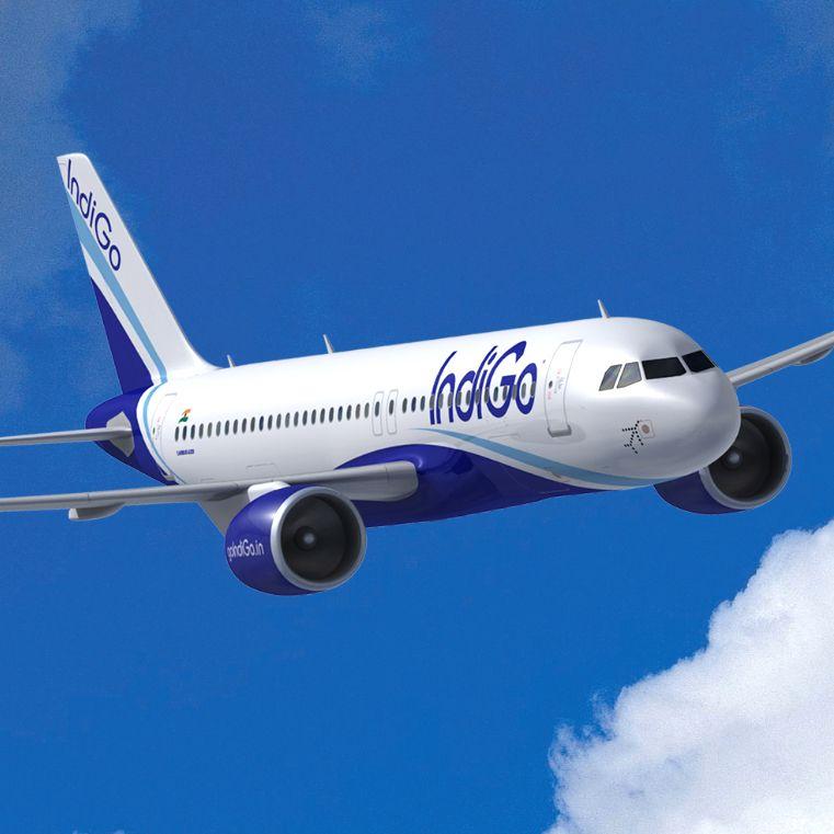 IndiGo Air Cargo Tracking - Track your IndiGo Courier