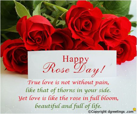 Rose Day Valentines Day Quotes Images Happy Valentine Day Quotes Valentine S Day Quotes