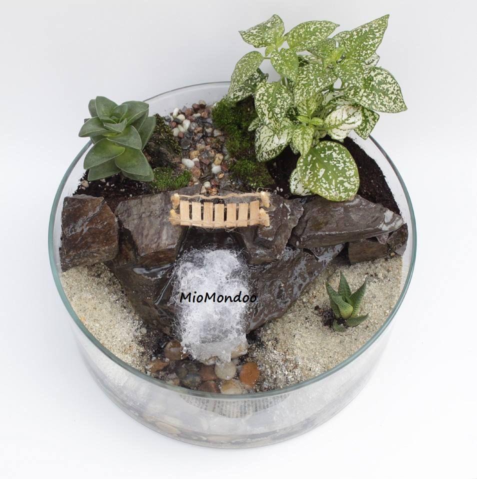 Miniature Garden From Miomondoo Terrarium Waterfall Terrarium