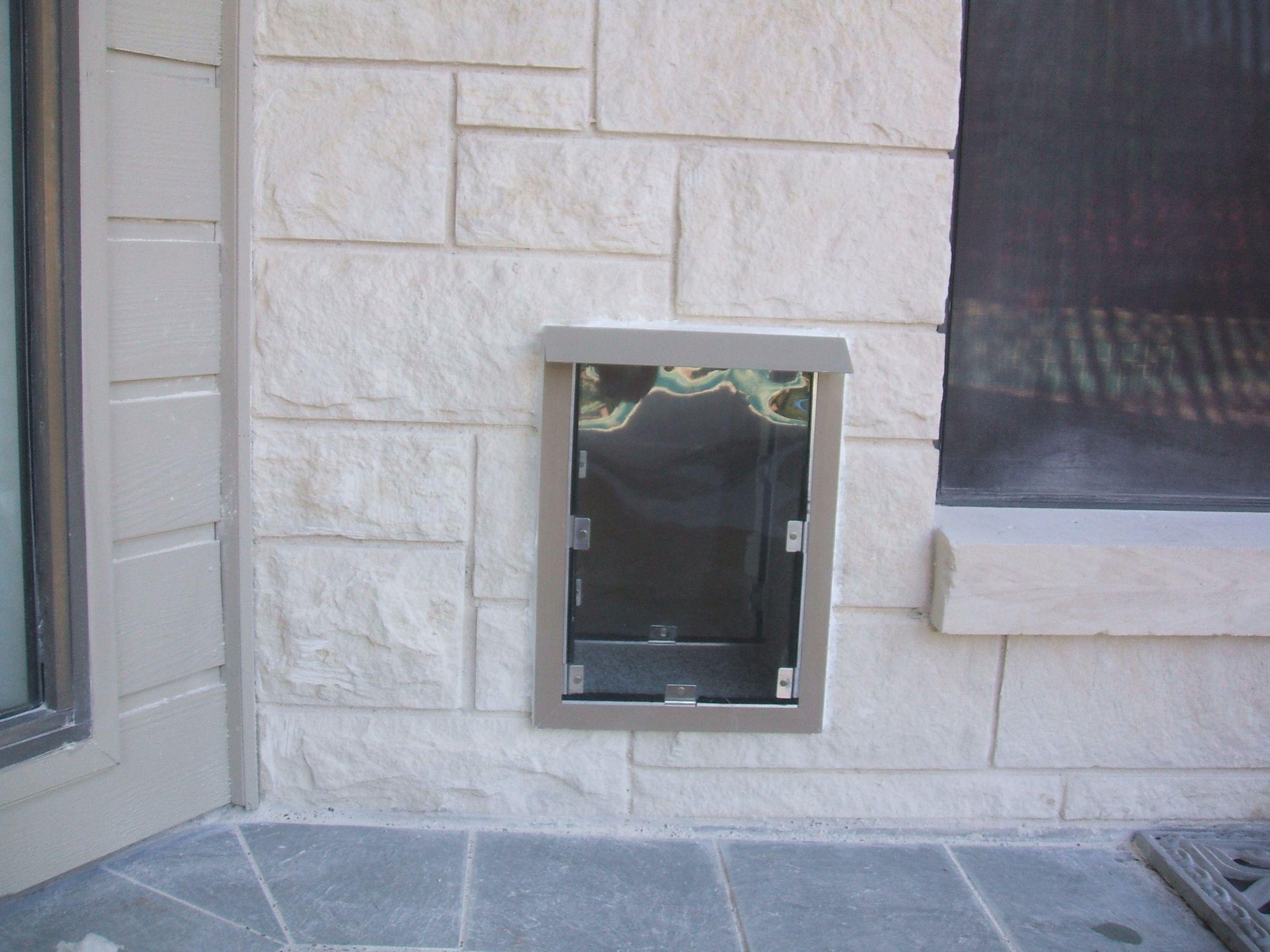 Large Hale pet door Pet door installation, Door