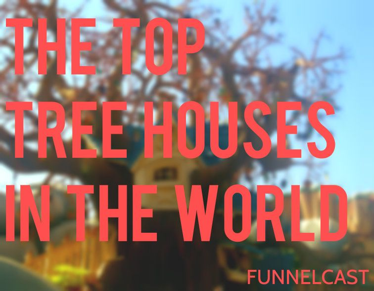 The Top Tree Houses in the World | The News Funnel