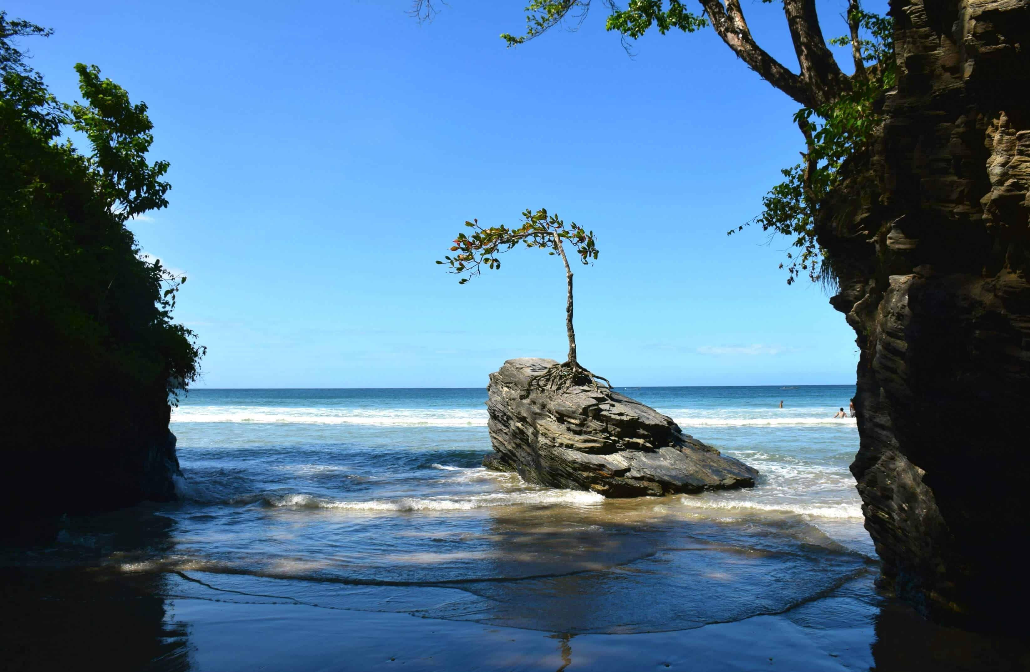 tour Trinidad's north coast road