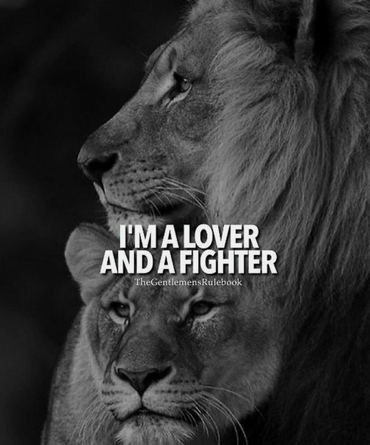 Lion King Love Quotes: € $UCCE$$ CLUB