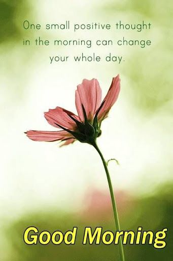 Good Good Morning Quotes