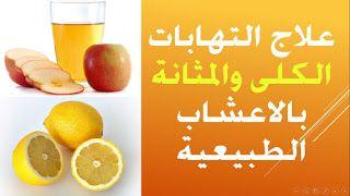 أمراض الكلي المزمنه الوقاية والعلاج علاج اليوريا في الدم بالاعشاب الطبية التعريف بالمرض يت Blog Posts Youtube Fruit