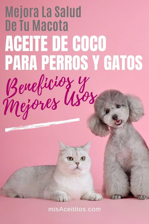 Aceite De Coco Para Perros Y Gatos Beneficios Y Usos Mis Aceititos Aceite De Coco Para Perros Repelente Para Perros Jabon Para Perros