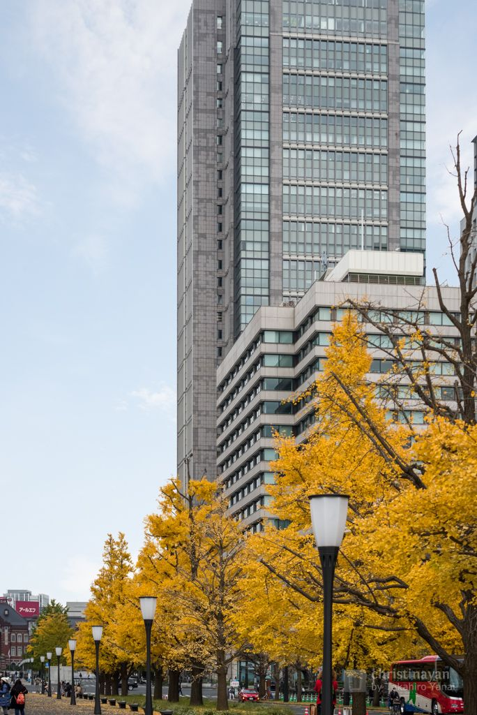 Marunouchi Building in autumn (丸の内ビルディング) / Mitsubishi