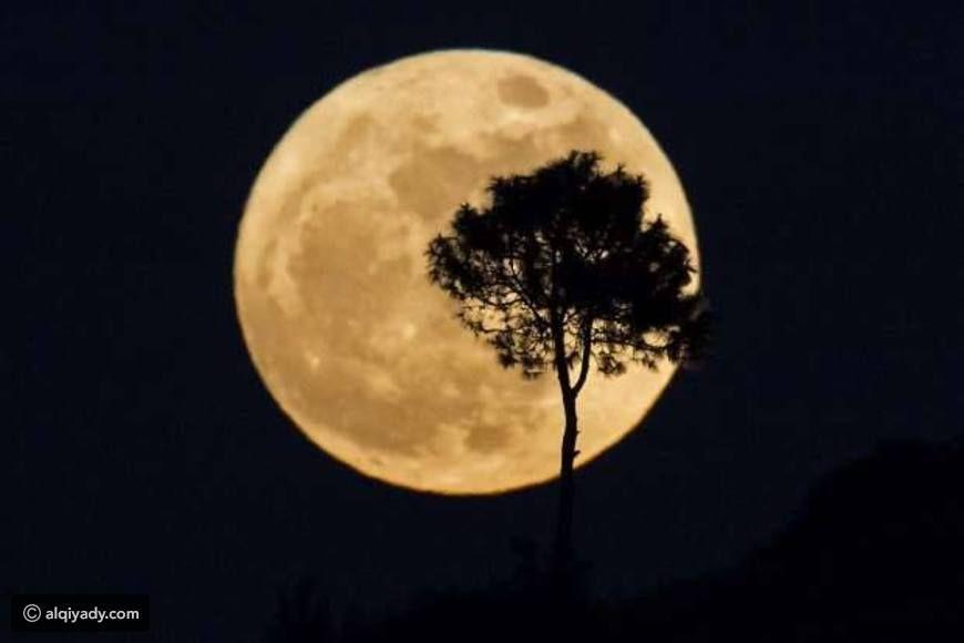 أجمل صور القمر العملاق ظاهرة نادرة لم تحدث منذ 7 عقود Super Moon Supermoon 2016 Sun And Stars