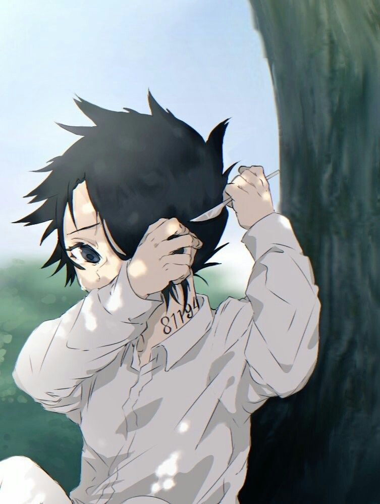 Pin On The Promised Neverland