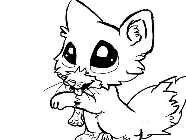 cute fox coloring pages coloring pages pinterest foxes