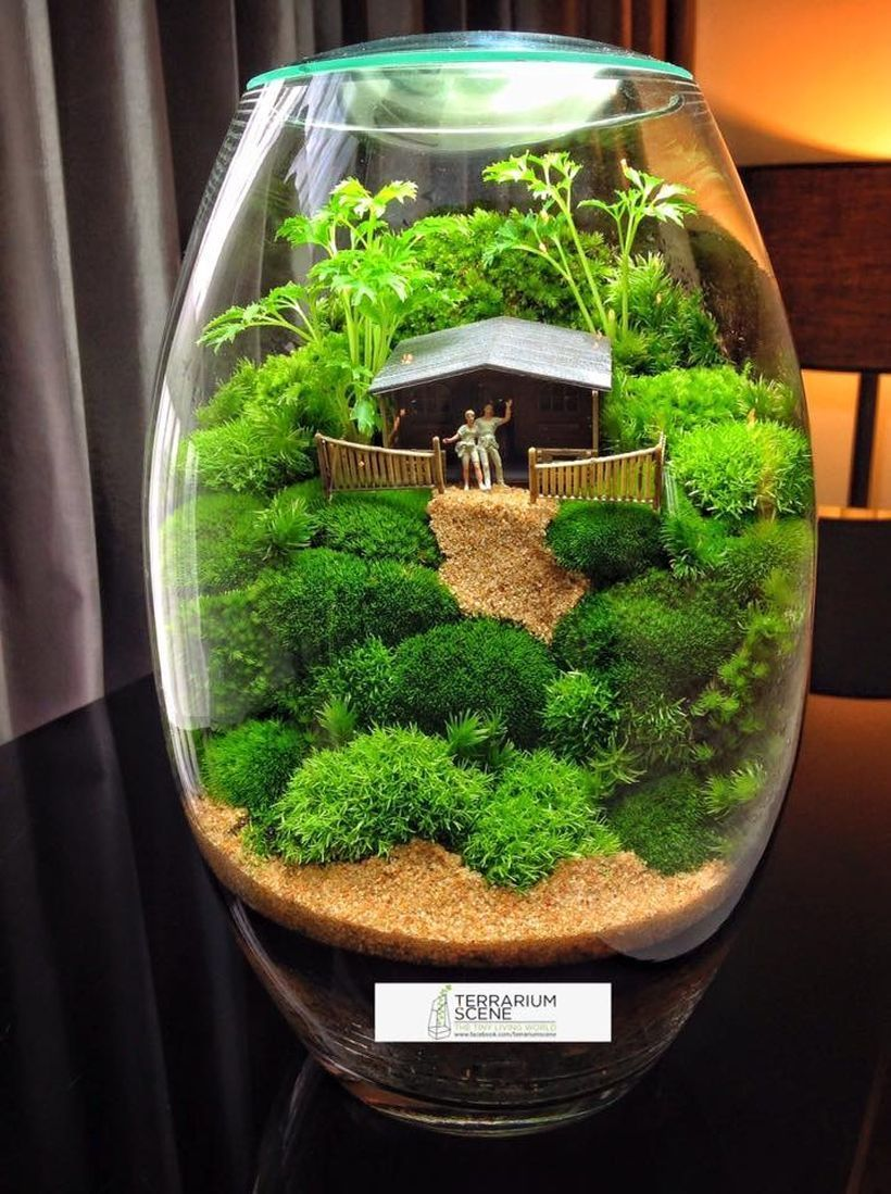 100 stunning bonsai terrarium for miniature landscaping in the jars home decorations. Black Bedroom Furniture Sets. Home Design Ideas