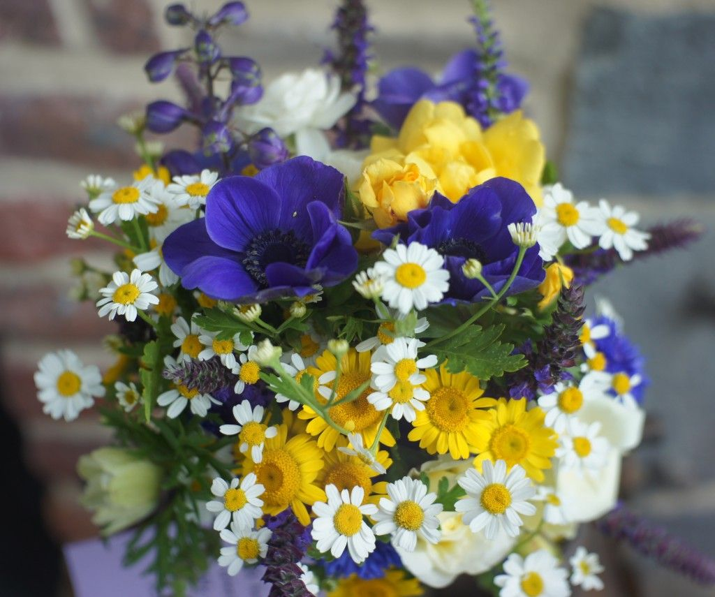 Blue anemone and feverfew with some yellow spray roses one pilgrim blue anemone and feverfew with some yellow spray roses one pilgrim rose salvia mainacht anemone bouquetflower izmirmasajfo Image collections