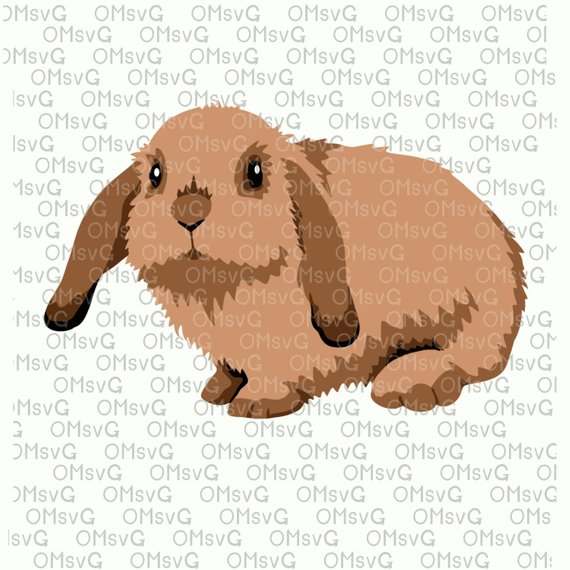 Bunny lop. Exotic animals svg set