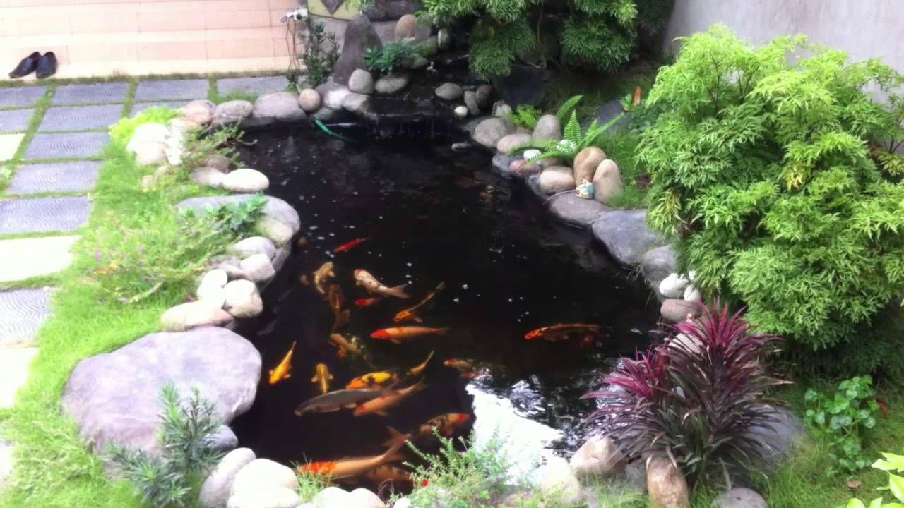 Kết quả hình ảnh cho hồ cá koi mini sân vườn