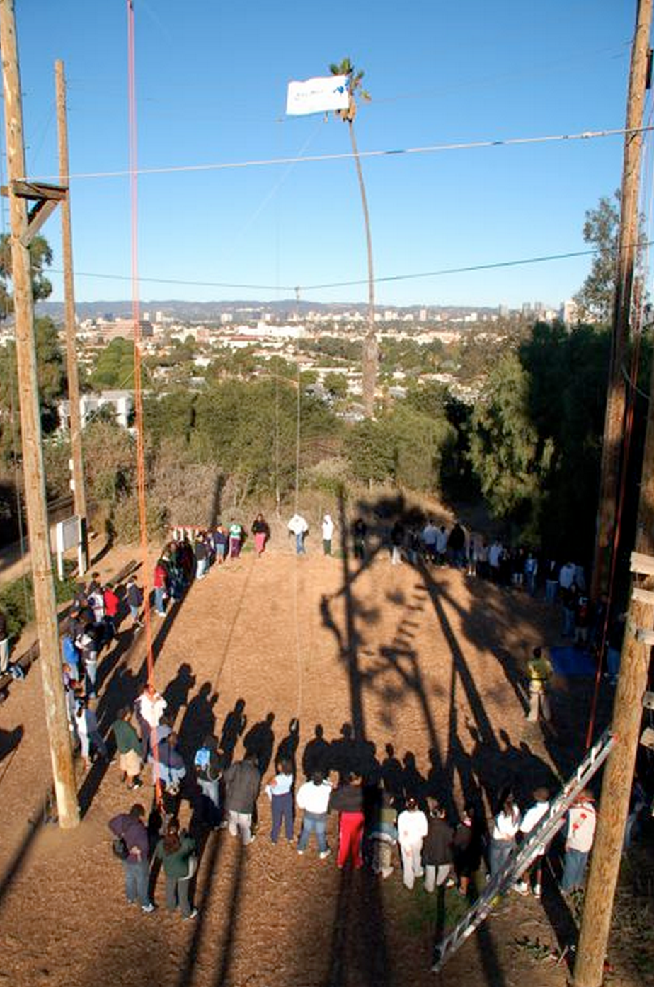 Culver City Park Is Home To A New Open Ropes Course Run By Fulcrum Adventures The Culver City Teambuilding High Ropes Cha Culver City Park City Nature Trail